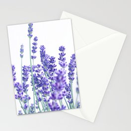 Fresh Lavender #1 #decor #art #society6 Stationery Cards