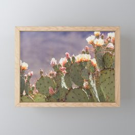 Prickly Pear Blooms I Framed Mini Art Print