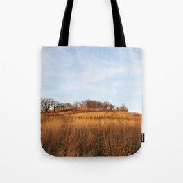 Golden Autumn Savanna Tote Bag