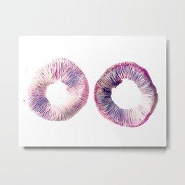 Mushroom Project - 2 Metal Print