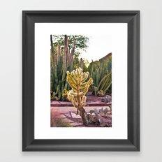 Desert Botanical Gardens  Framed Art Print