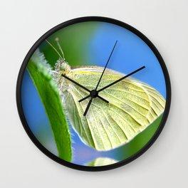 Butterfly 61 Wall Clock