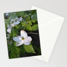 Dogwood wall Stationery Cards