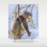 koala Shower Curtains featuring Koala by Imagevixen