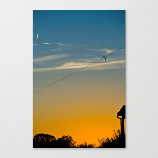 bird silhouette Canvas Print