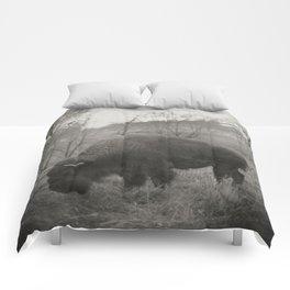 Buffalo Comforters