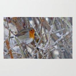Robin in Winter | Rotkehlchen im Winter Rug