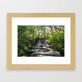Beautiful Stream in a Japanese Garden in Himeji, Japan. Framed Art Print