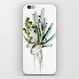 Marine Gardens iPhone Skin