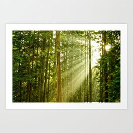 A Light Peeks Through Art Print