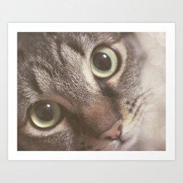 Kitty magic Art Print