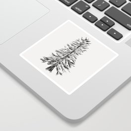Cedar Tree Sticker