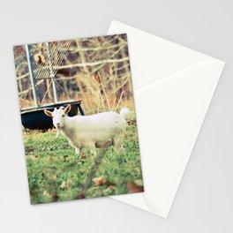 Billy's Bonny Bairn Stationery Cards