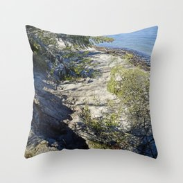 Beach Erosion and Joseph Fay shipwreck Throw Pillow