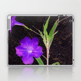 Mexican Petunias Laptop & iPad Skin