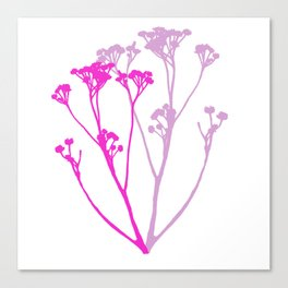 We pick the pretty ones and bring them home Canvas Print