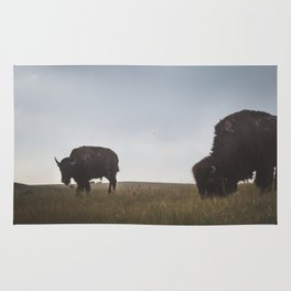 Bison Grazing in the Badlands Rug