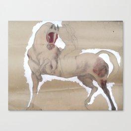 Horse Show 1 Canvas Print