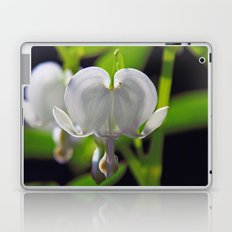 White Bleeding Heart Laptop & iPad Skin