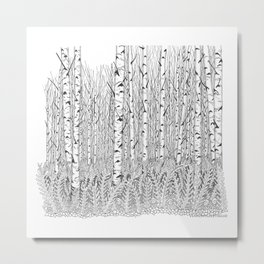 Birch Trees Black and White Illustration Metal Print