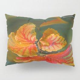 Autumn Whirl Pillow Sham