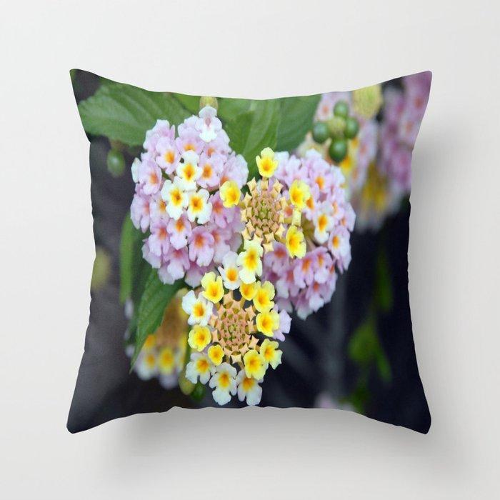 Tropical Plant Lantana Camara or West Indian Lantana Throw Pillow