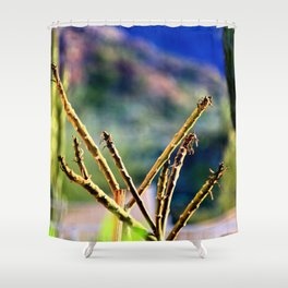 Beauty in the Mountains Shower Curtain