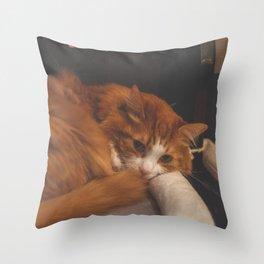 Furry sleepy orange white cat Throw Pillow