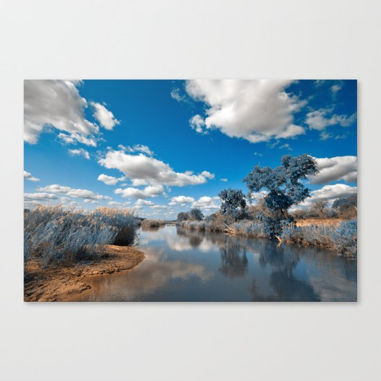 Kruger Park Landscape - Winter Blue Canvas Print