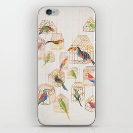 Architectural Aviary iPhone Skin