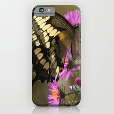 Giant Swallowtail (Papilio cresphontes) Slim Case iPhone 6s