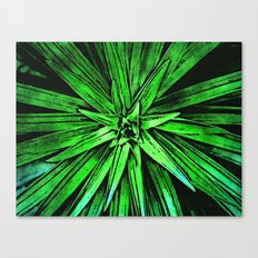 Leaves of A Green Plant Canvas Print