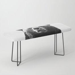 Black and white bear portrait Bench