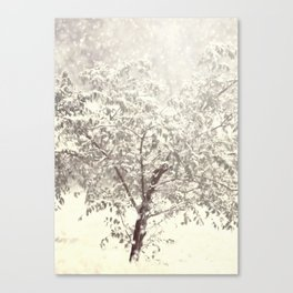 Ethereal Snow Canvas Print