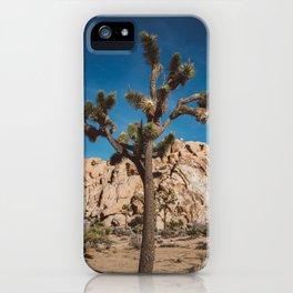 Joshua Tree National Park III iPhone Case