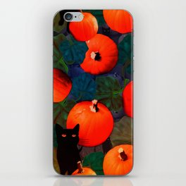 Pumpkins and Black Cats iPhone Skin
