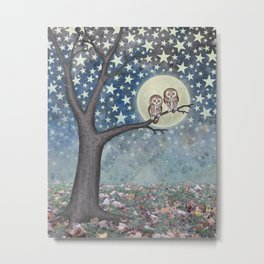 northern saw whet owls under the stars Metal Print
