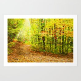 Autumns Light Art Print
