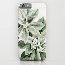 Sedum Succulents iPhone Case