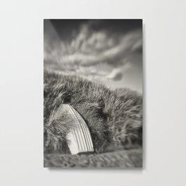Beadnell Boat, Northumberland Metal Print
