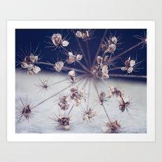 Like Spinning Stars Art Print