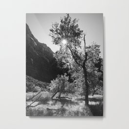 Shine Through Metal Print