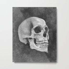 Impermanence Metal Print