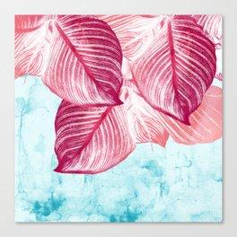 Tropical Canna Leaves  Canvas Print