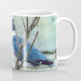 Young Belted Kingfisher (Repost) Coffee Mug