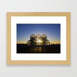 Jardim Botânico | Botanical Garden Framed Art Print