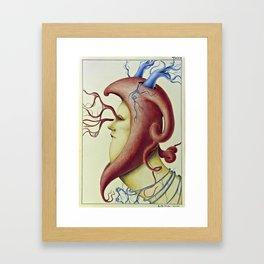 Wunderkammer Tav.4 Framed Art Print