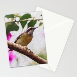 Bird - Photography Paper Effect 008 Stationery Cards