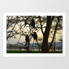 Kenya Monkey Art Print
