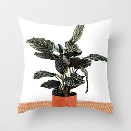 Calathea Planter Throw Pillow